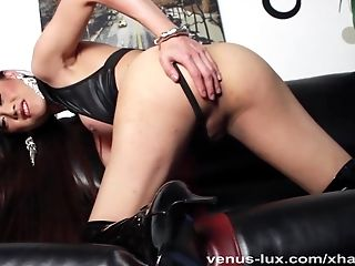 Venus Lux Directives You To Servitude