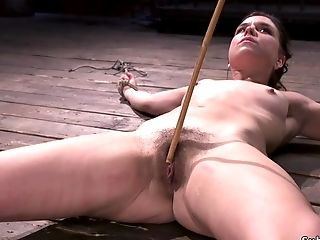 Hairy Vag Dark-haired In Upside Down Suspension