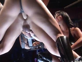 Cute Pegging Porn