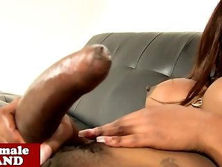 Trans Chocolate Queen Mya Strips And Jacks